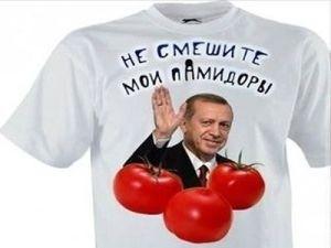 В«ДружественнаяВ» Турция заморозила экспорт зерновых из России - «Экономика Крыма»