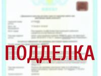 Специалисты Госкомрегистра приостановили регистрацию сделки по продаже апартаментов в Алуште из-за документов с признаками поддельности - «Госкомрегистр»