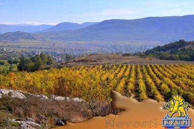 «Золотая Балка» открывает туристический комплекс с винным подвалом и рестораном  - «Бизнес»