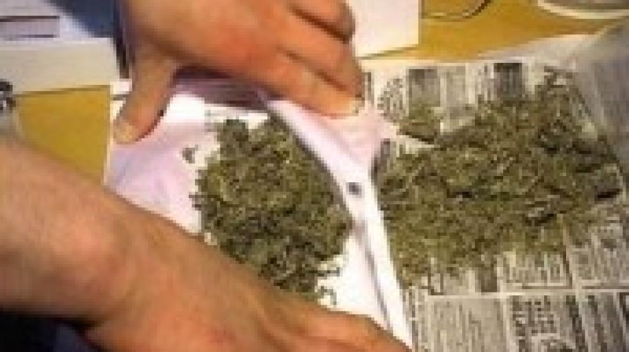 Наказание за хранение марихуаны в украине конопля в насвае