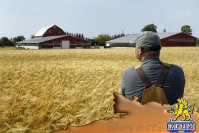 Правительство Севастополя поддержит фермеров.  - «Бизнес»