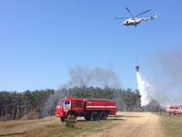 Комплексная тренировка по ликвидации условного лесного пожара завершена - «МЧС»