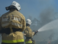 В Крыму проходит комплексная тренировка по ликвидации крупного лесного пожара - «МЧС»