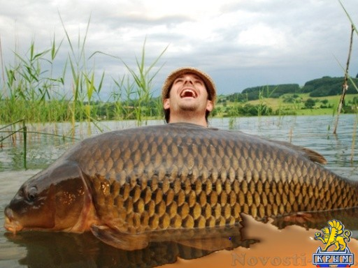 Крымчанам запретят ловить рыбу . - «Центральный Крым»
