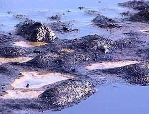 Прокуратура Керчи нашла порченные нефтяниками феодосийские земли - «Керчь»