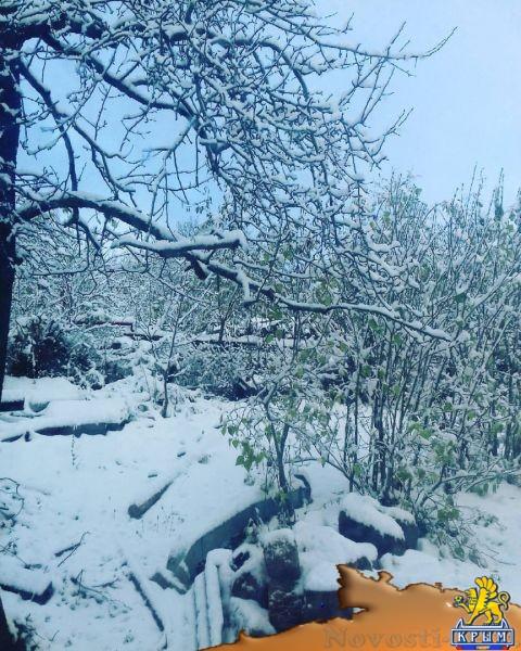 В Крыму выпал первый снег  - (видео)