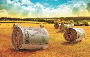 На сельское хозяйство Крыма потратят два миллиарда  - «Экономика»