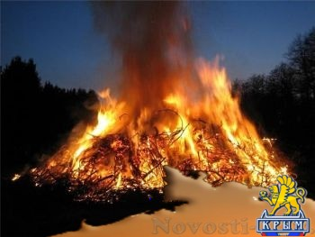 На Херсонщине сожгли уже 9 тысяч мертвых птиц - «Происшедствия Крыма»