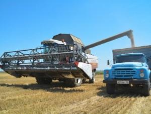 Господдержка аграриев станет стимулом для развития малого предпринимательства в агросекторе, - Константин Бахарев - Экономика -  - «Новости Крыма»
