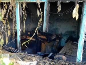 Крымские спасатели потушили пожар     - «Происшествия Крыма»