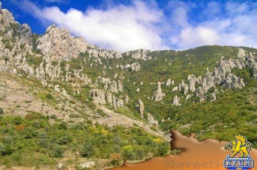 Крымские леса закрыты для посещения  - «Политика»