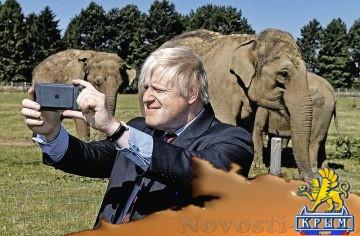 Британский политик: Лучше потратить деньги на африканских слонов, чем на Украину - «Политика Крыма»