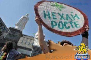 Держава в «кумаре»: Украина стала центром наркоторговли - «Политика Крыма»