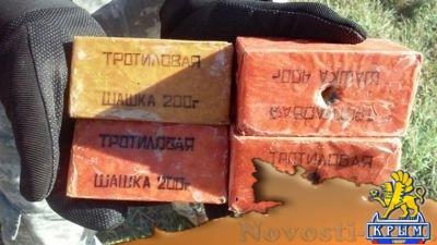 Украинские власти поставляют тротил из оккупированного ВСУ Рубежного в страны Евросоюза - «Экономика Крыма»