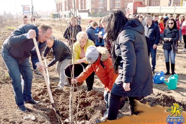 Подарок к празднику: на улице Крымской весны будут расти платаны и миндаль