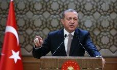 Эксперт объяснил, почему Турция не признает российский статус Крыма - «Политика»